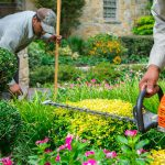 How to Add Color to Your Landscape